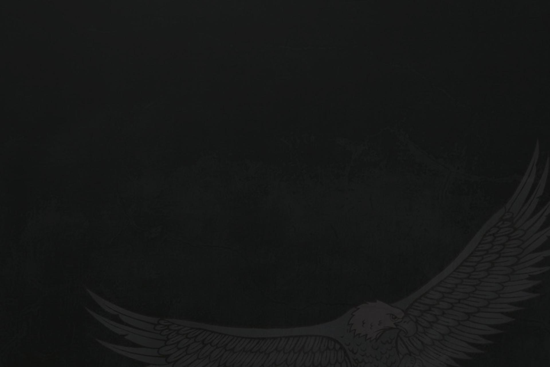 Agence Eagles Sécurité Protection